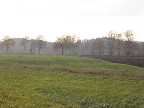 Unebenheiten im Feld Druisheim  - Via Claudia