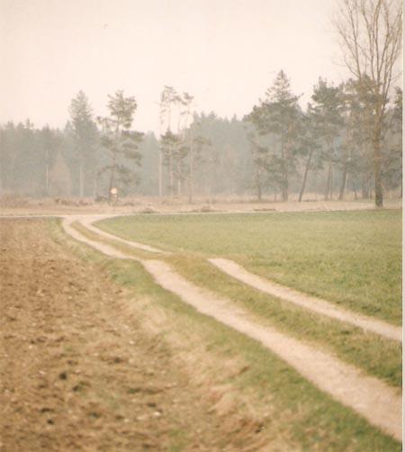 Die Via Claudia im Feld